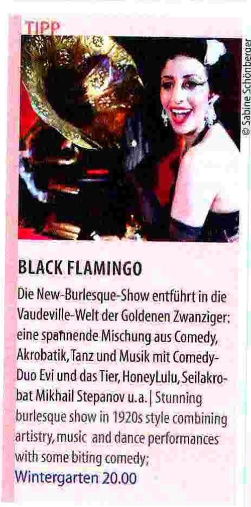Pressespiegel_BlackFlamingo_aktuell